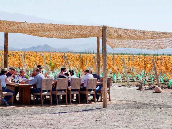 Casa de Uco Vineyards and Wine Resort Cuisine & Wines