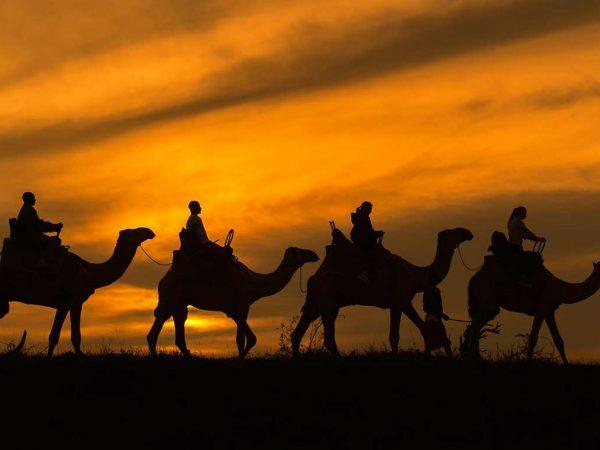 Elewana Loisaba Lodo Springs Camel Safaris