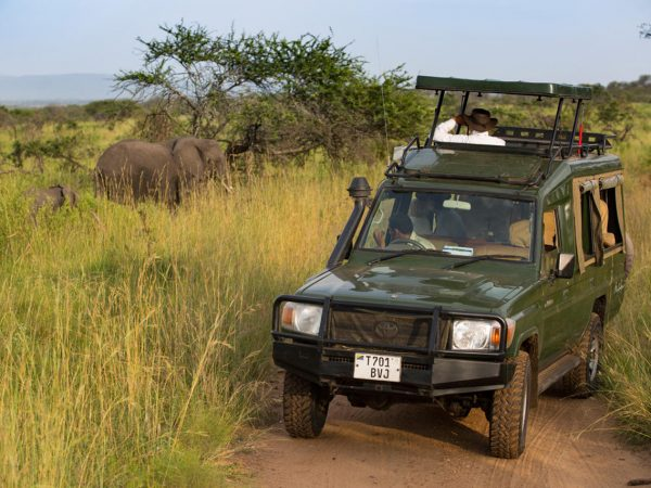 Elewana Serengeti Migration Camp Game Drives