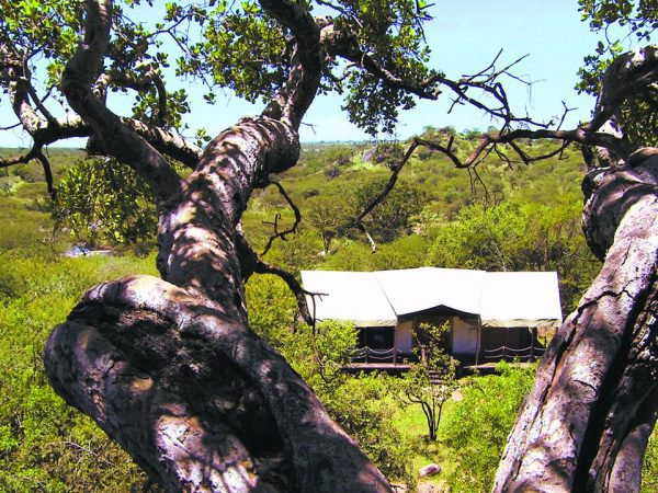 Elewana Serengeti Migration Camp Lobby