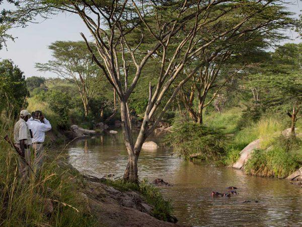 Elewana Serengeti Migration Camp Walking Safari