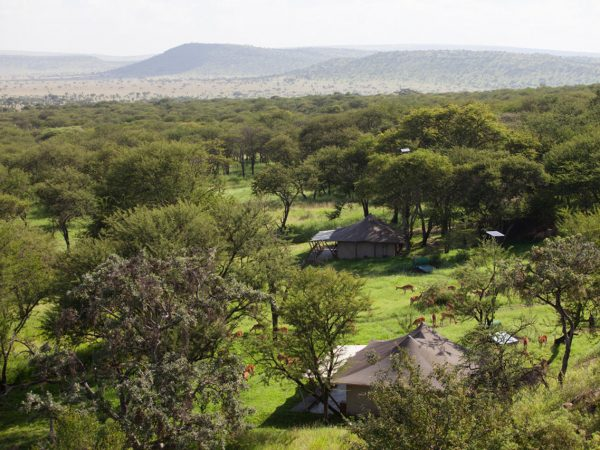 Elewana Serengeti Pioneer Camp Top View