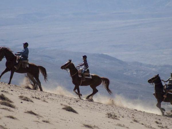 Explora Atacama Chile Horseback Riding