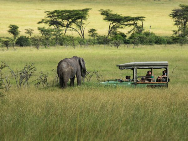 Great Plains Conservation Mara Expedition Game Drives