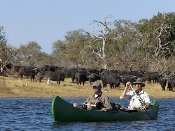 Great Plains Conservation Selinda Adventure Trail Game Drives