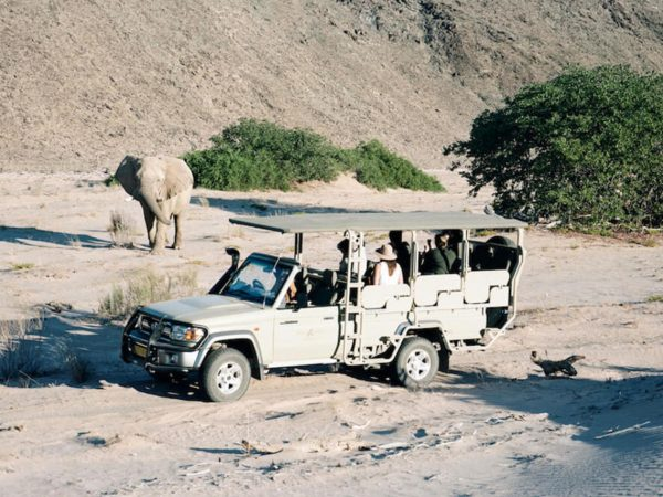 Hoanib Valley Camp Game Drives