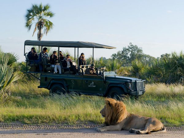 Jao Camp Game Drives
