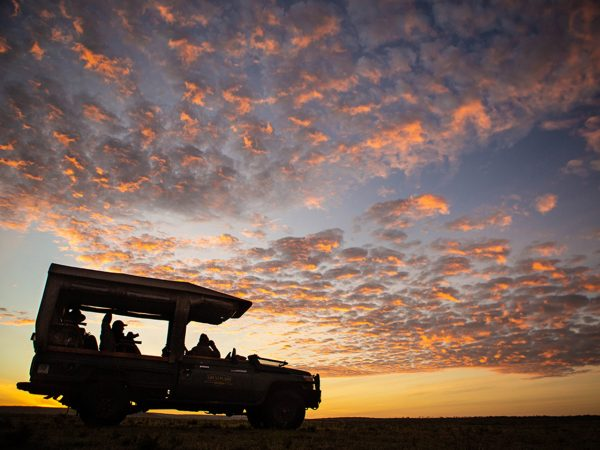 Mara Nyika Great Plains Conservation Game Drive
