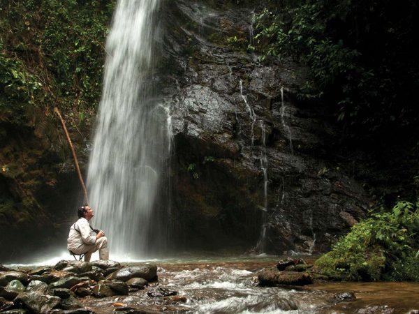 Mashpi Lodge Copal Waterfall