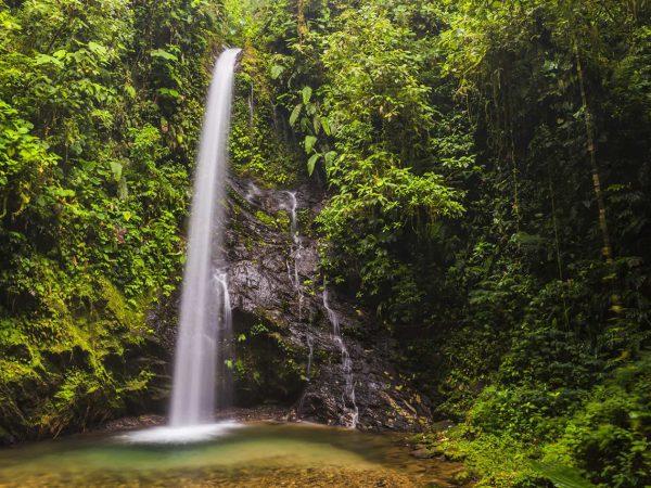 Mashpi Lodge Healing Waterfall