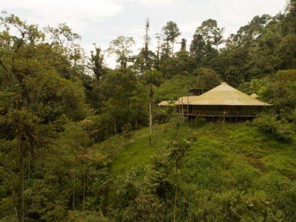 Mashpi Lodge Outsize View