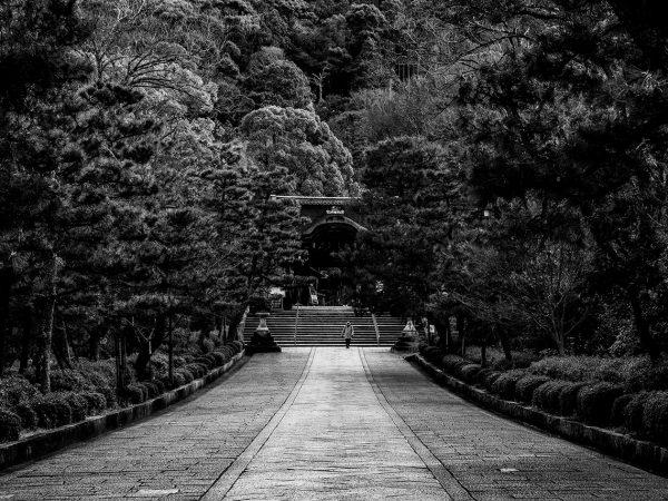 Park Hyatt Kyoto View