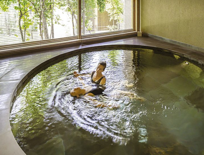 Vana Wellness Retreat Watsu