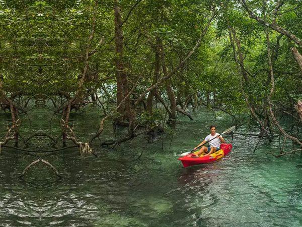 Wa Ale Island Resort Kayak