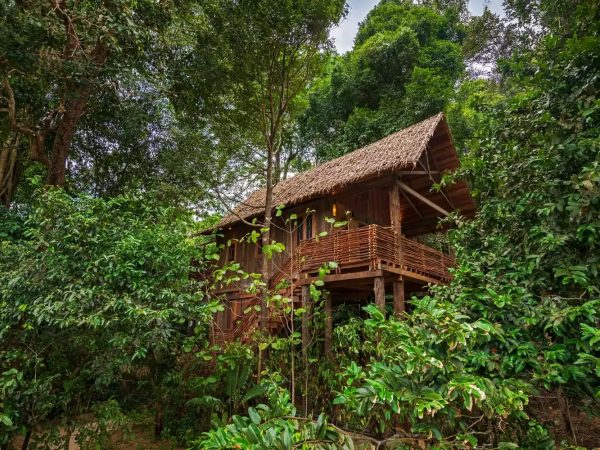Wa Ale Island Resort Treetop Villa Exterior