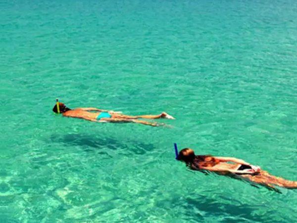 Wa Ale Island Resort Snorkel
