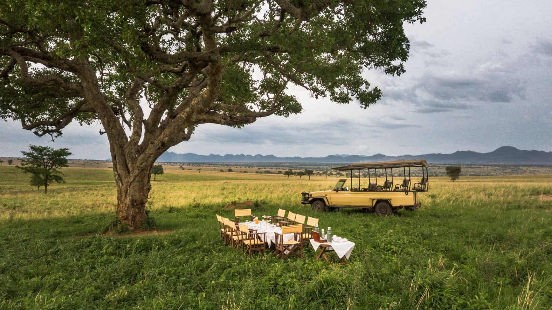 Apoka Safari Lodge Bush Dining