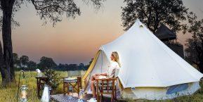 Feline Fields Khwai Camp, Okavango Delta