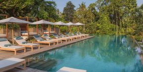 Nirjhara Bali