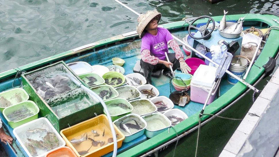 Sai Kung Floating Seafood Market