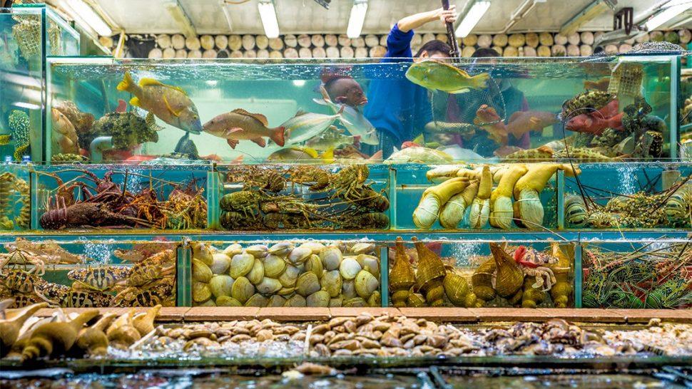 Sai Kung Seafood Hong Kong