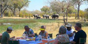 Brave Africa Mobile Safaris